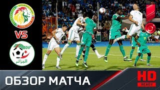 19.07.2019 Сенегал - Алжир - 0:1. Обзор финального матча Кубка Африки