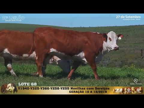 LOTE 068