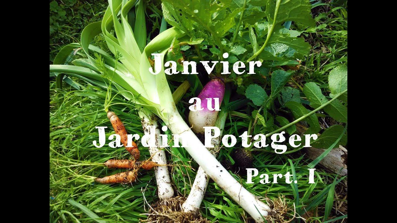 Le Jardin Potager En Janvier janvier au jardin potager - part.i 🌳#22