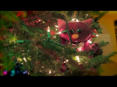 Corduroy Cat Gets His Christmas On!