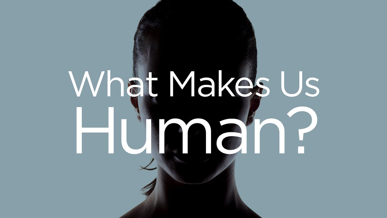 Image result for what makes us a human images