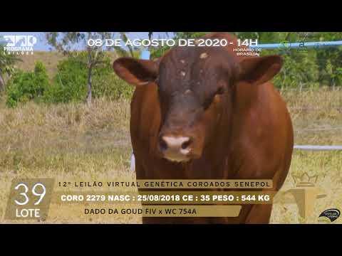 LOTE 39 CORO 2279