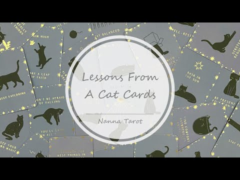 開箱  宇宙貓咪指引卡 • Lessons From A Cat Cards // Nanna Tarot