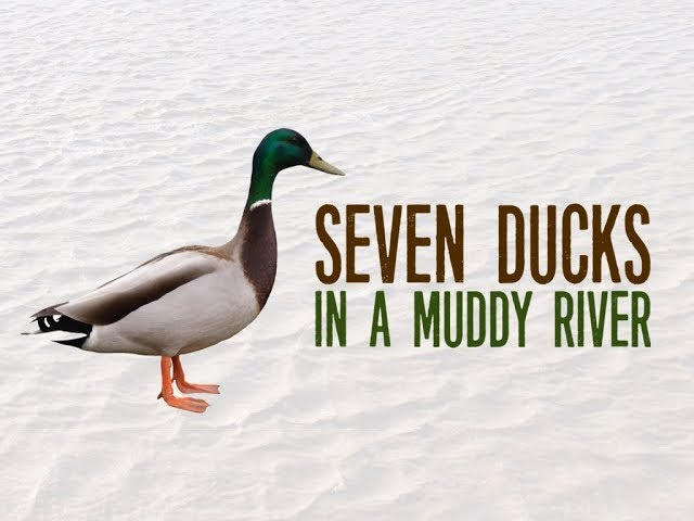Seven Ducks in a Muddy River - Pastor Chris Sowards - 6/30/19