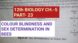 Class 12 biology chapter 5||colour blindness & sex det. In bees||by study with Farru