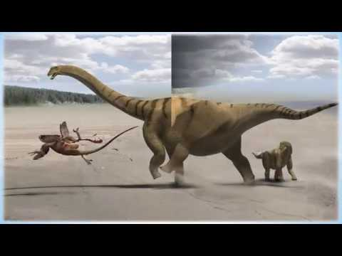 """Some Facts About Utahraptor, the World's Biggest New Creatures """"Raptor"""""""