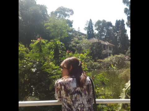 Puncak Bogor
