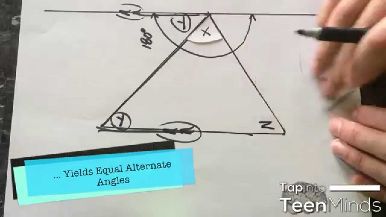 Angles in a triangle homework help