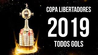 Copa Libertadores 2019 ● All Goals [HD]