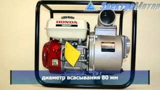 видео Мотопомпа Honda