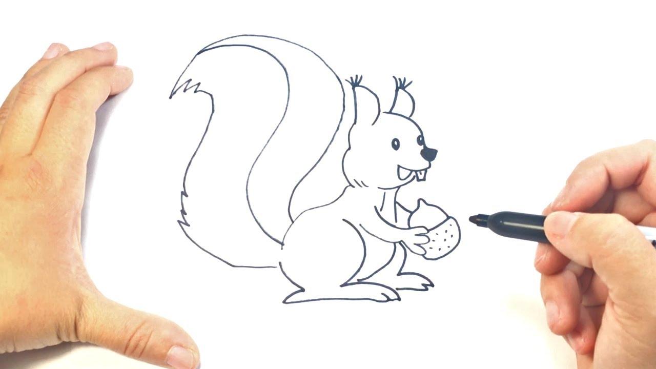 Como Dibujar Un Ardilla Paso A Paso Dibujo Facil De Ardilla Youtube
