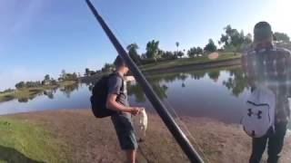 Sneaking into a golf course!  Breaking PB's!  Catching bed fish! Biggest carp of my life!