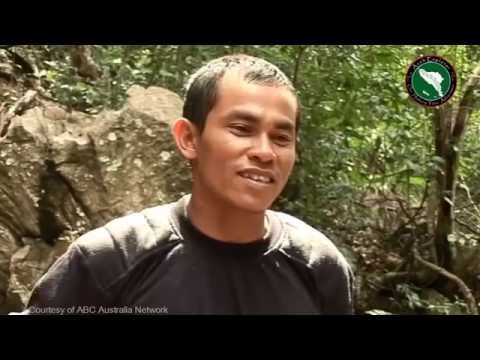 Guerrilla Adventure Eco-Tourism in Aceh (Best Version)