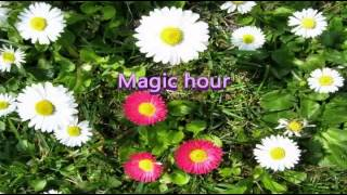 Magic hour/嵐 Relaxing Music
