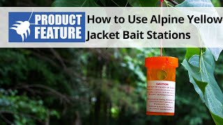 How to Use Alpine Yellow Jacket Wasp Bait Stations