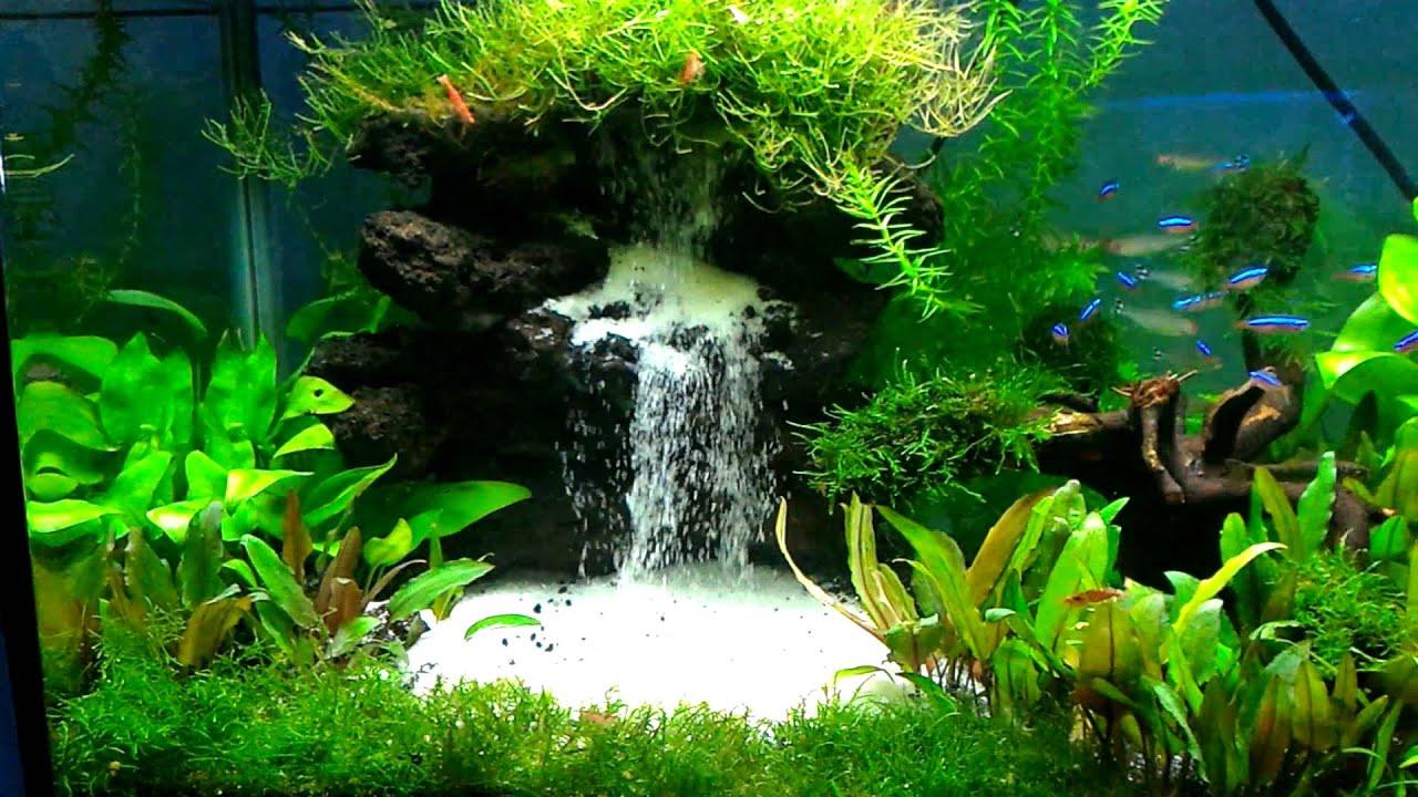 Aquascape air terjun depok - YouTube