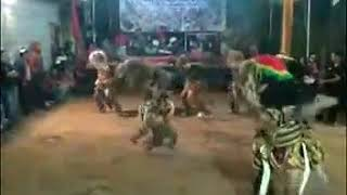 Video status wa gedruk anoman obong