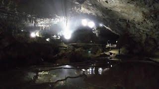 山口県美祢市の秋芳洞へ入ってみた(特別天然記念物)