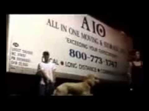 All in one moving review 106