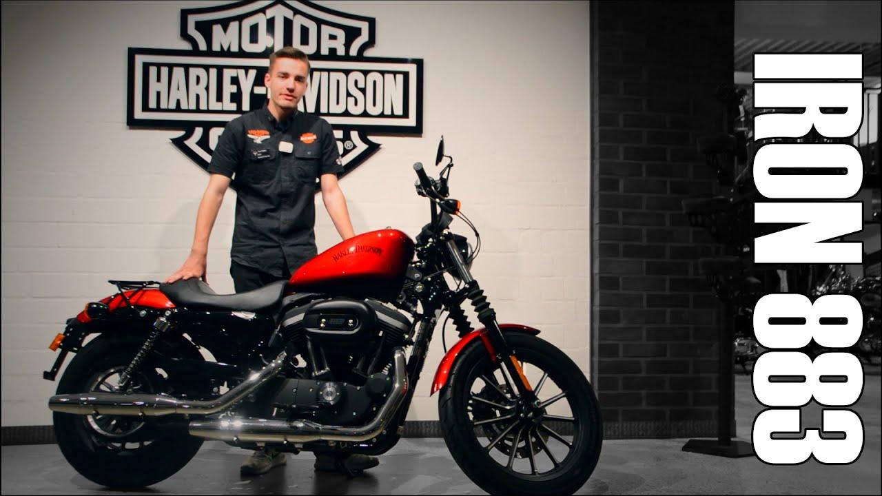 Harley-Davidson IRON 883 zu verkaufen - Harley-Davidson Hamburg Nord