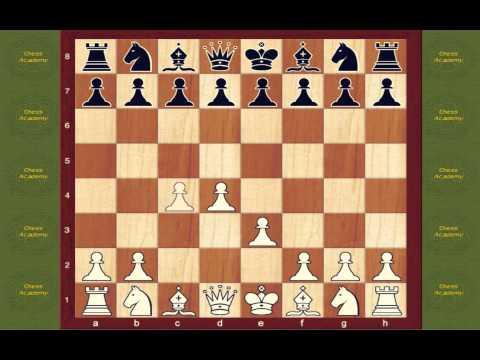 Chess Opening Book Van't Kruijs Opening