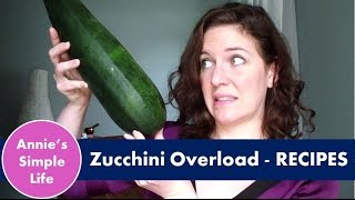 Zucchini Recipes - Summer Fav & Summer Project Collab