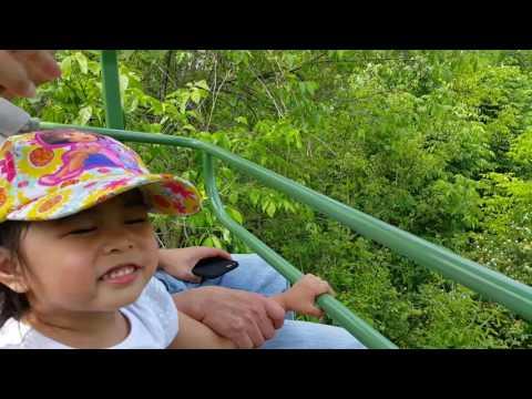 Children's Zoo  Fort Wayne, Indiana
