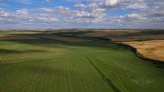 The Prairies: Flat Out Beautiful
