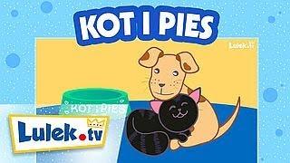 Kot i pies. NOWA piosenka dla dzieci :)
