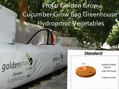 Projar Golden Grow Washed Coir Cucumber Grow Bag Greenhouse Hydroponic Vegetables