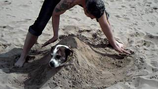 burying my dog in the sand at mablethorpe beach