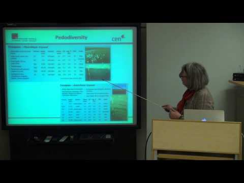 Pedodiversity and Carbon Pools of permafrost affected Soils in the Lena Delta | СПбГУ | Лекториум