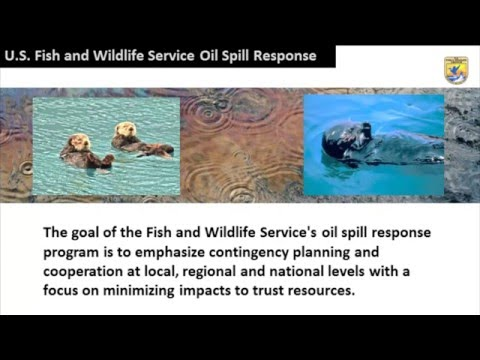 U.S. Fish and Wildlife Service Oil Spill Response