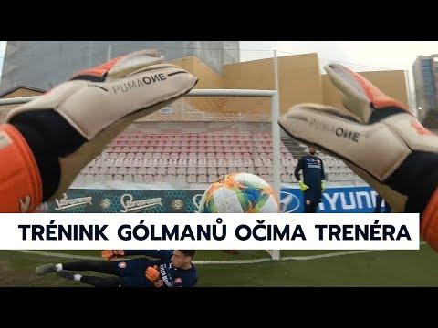 Trénink gólmanů pohledem trenéra