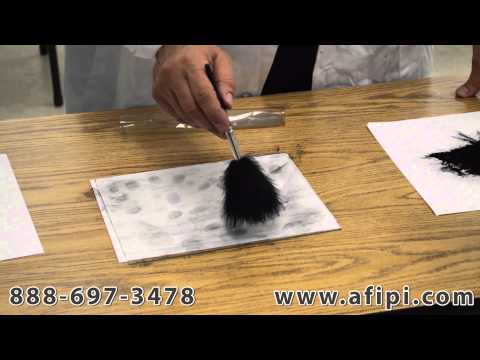 Lifting Developing Latent Fingerprints at a Crime Scene by a Florida Private Investigator