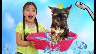 Dominika Bathes Puppy Max first time