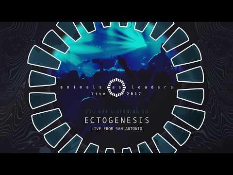 ANIMALS AS LEADERS - Ectogenesis (Live from San Antonio)
