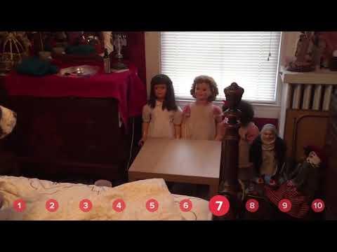 Doll Fearing Dog