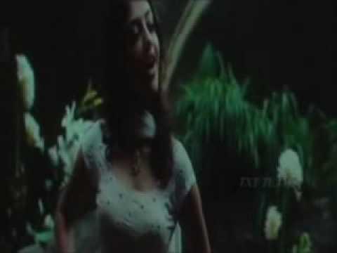 panchadara bomma video song