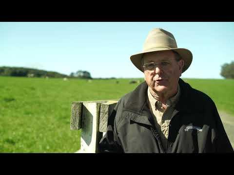 Livestock Pipeline
