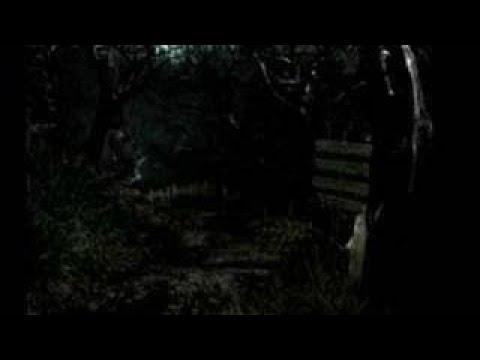 Resident Evil Remake Part 20 Goodbye Lisa