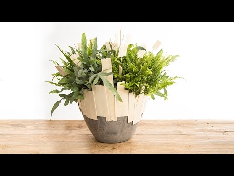 Mixed Fern Arrangement | Flower Factor How To | Plant Creation