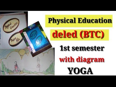 Deled ( BTC) 1st semester......  Physical Education file...