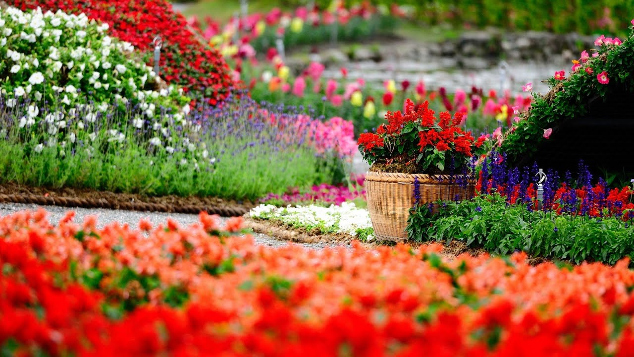 Master Sustainable Gardening: Tips For Sustainable Landscaping With ...