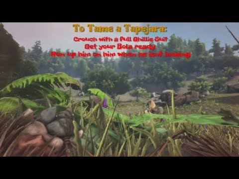 Ark how to solo tame a quetzal ps4 youtube ark how to solo tame a quetzal ps4 malvernweather Choice Image