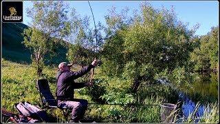 Рыбалка на реке Дон. Фидер. Июнь. (LiveFishing)