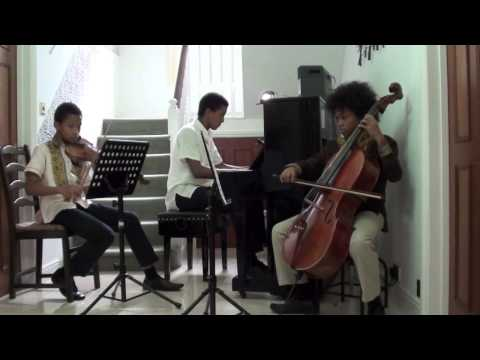 Canon In D By Pachelbel - Violin Cello And Piano Played By Johann, Frank And Josef Schymanski