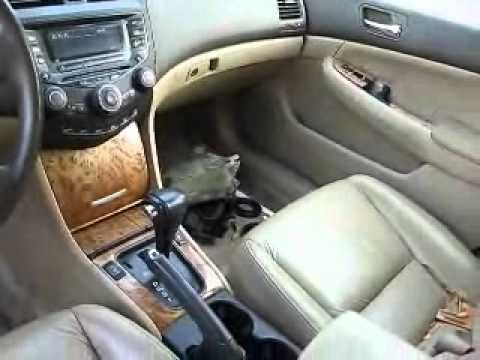 Superior Parting Out 2003 03 Honda Accord EX Sedan V6 VTEC   YouTube