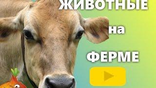 Животные на ферме. Мультик про животных. Как говорят животные. Звуки животных