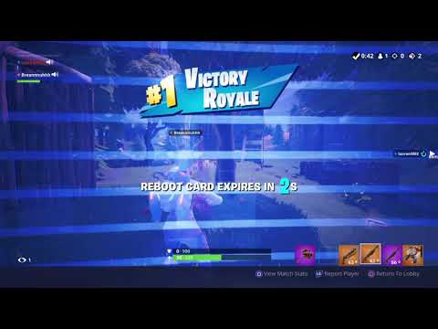 Captured my friends Fortnite epic squad duo solo win :D